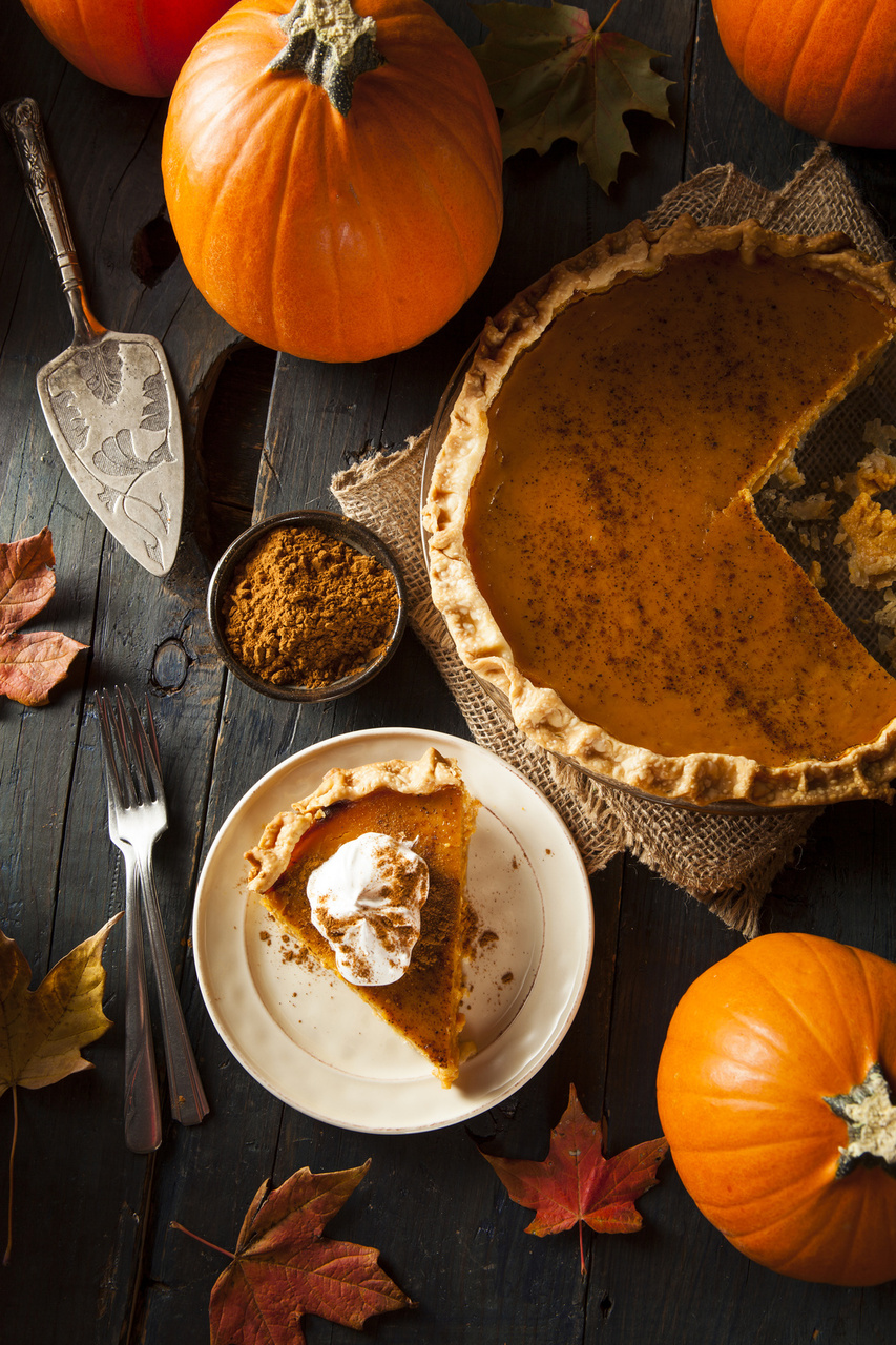Thanksgiving Recipe: Perfect Pumpkin Pie